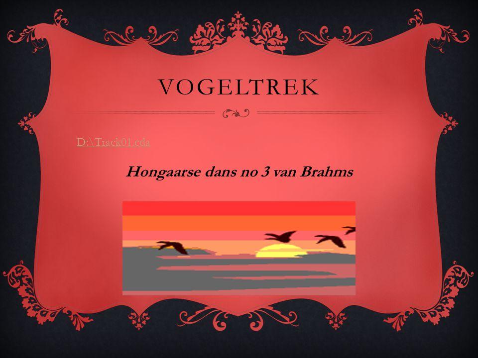 Hongaarse dans no 3 van Brahms
