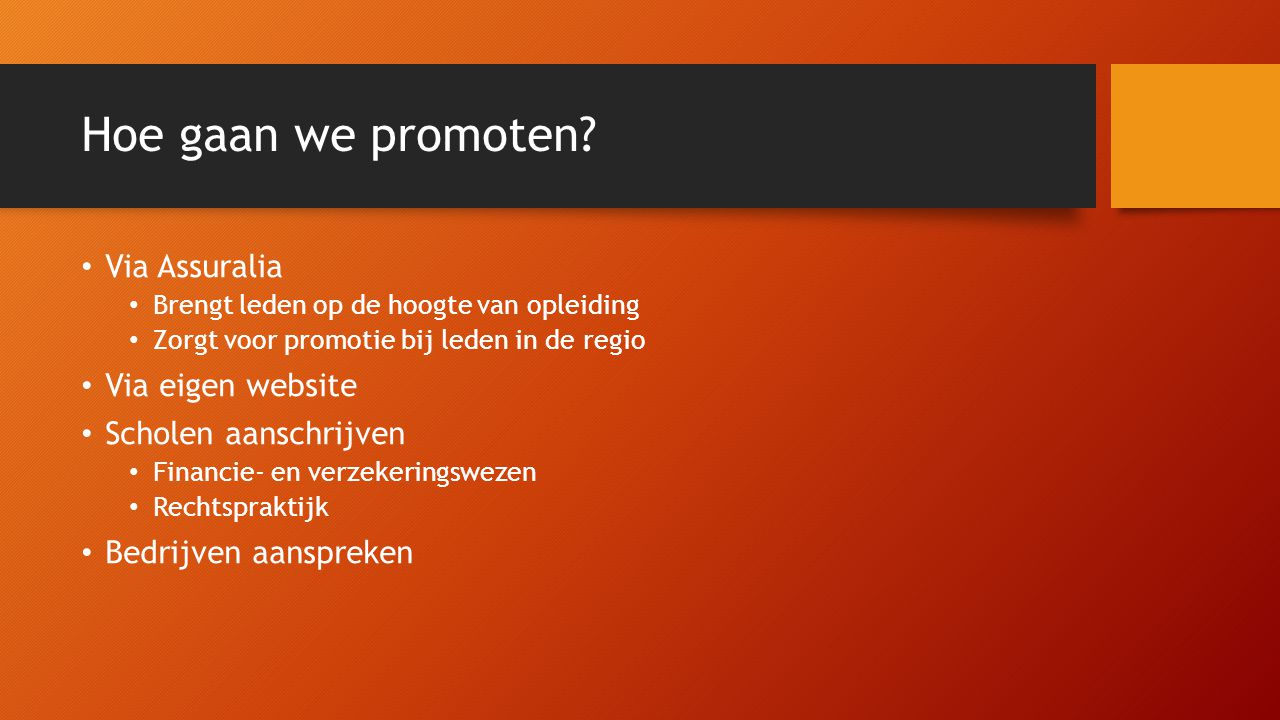 Hoe gaan we promoten Via Assuralia Via eigen website