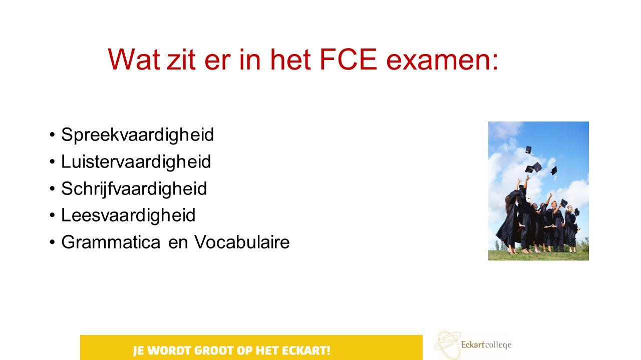 Wat zit er in het FCE examen: