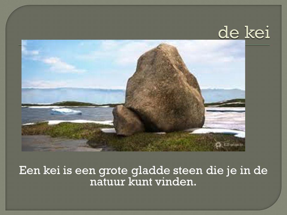 Een kei is een grote gladde steen die je in de natuur kunt vinden.