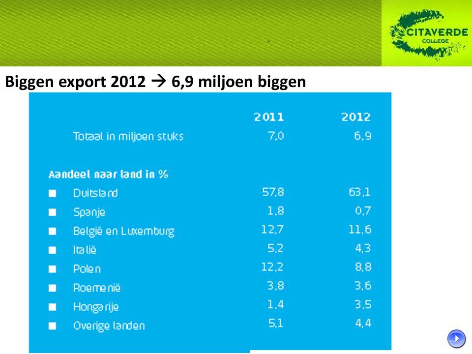 Biggen export 2012  6,9 miljoen biggen