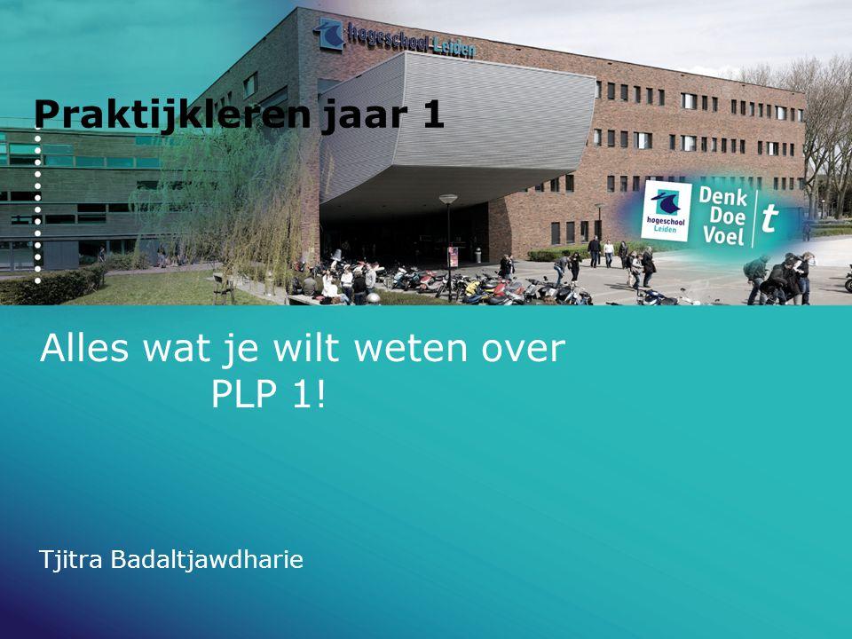 Alles wat je wilt weten over PLP 1!
