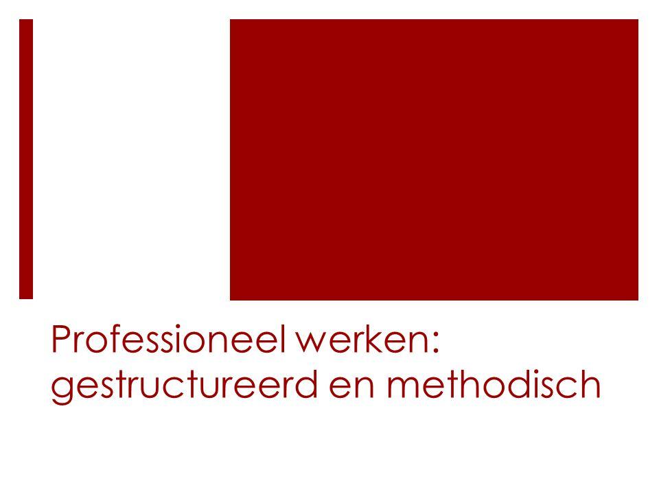 Professioneel werken: gestructureerd en methodisch