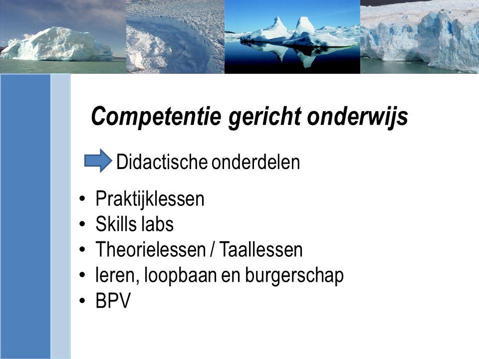 Competentie gericht onderwijs