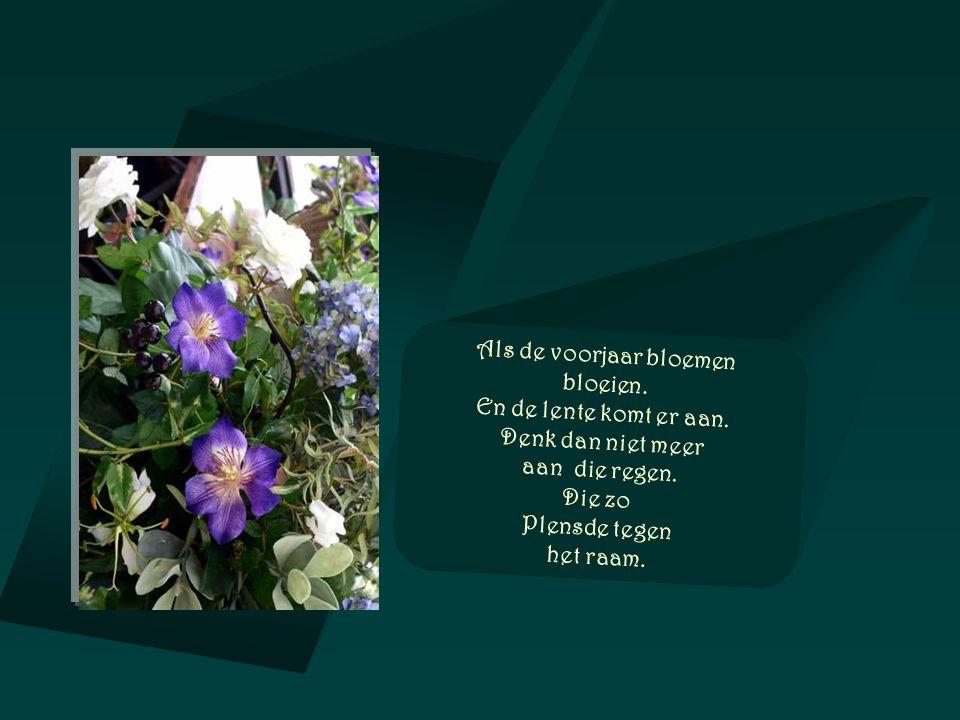 Als de voorjaar bloemen