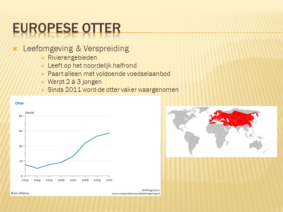 Europese Otter Leefomgeving & Verspreiding Rivierengebieden