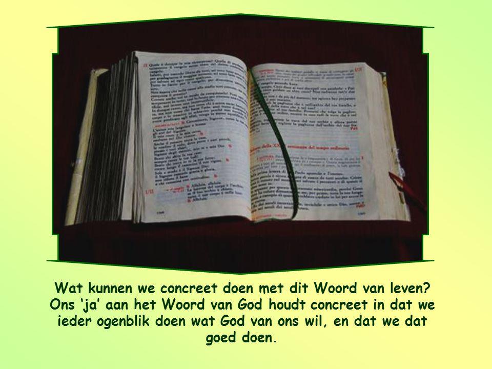 Wat kunnen we concreet doen met dit Woord van leven