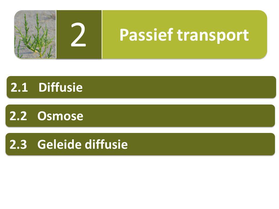 Passief transport 2 2.1 Diffusie 2.2 Osmose 2.3 Geleide diffusie