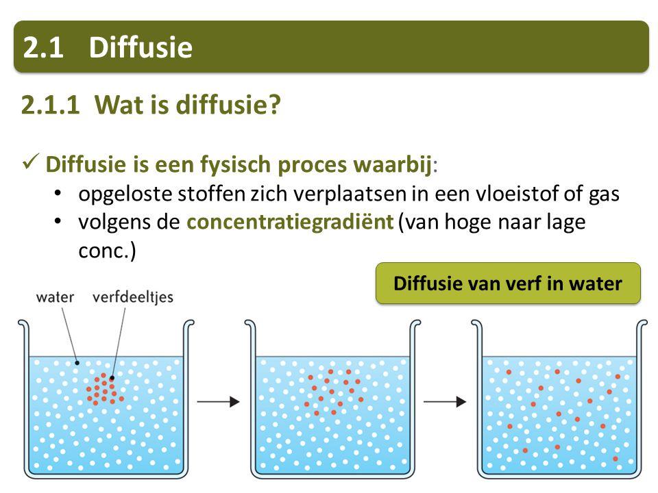Diffusie van verf in water