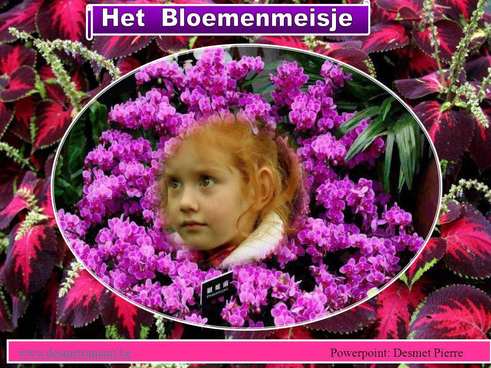 Het Bloemenmeisje www.desmetramaut.be Powerpoint: Desmet Pierre.