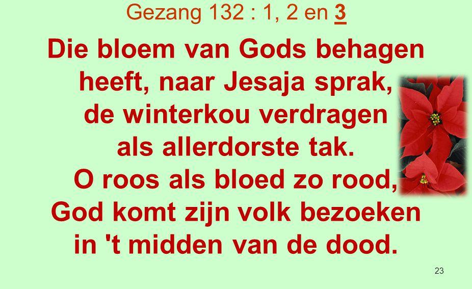 Die bloem van Gods behagen heeft, naar Jesaja sprak,