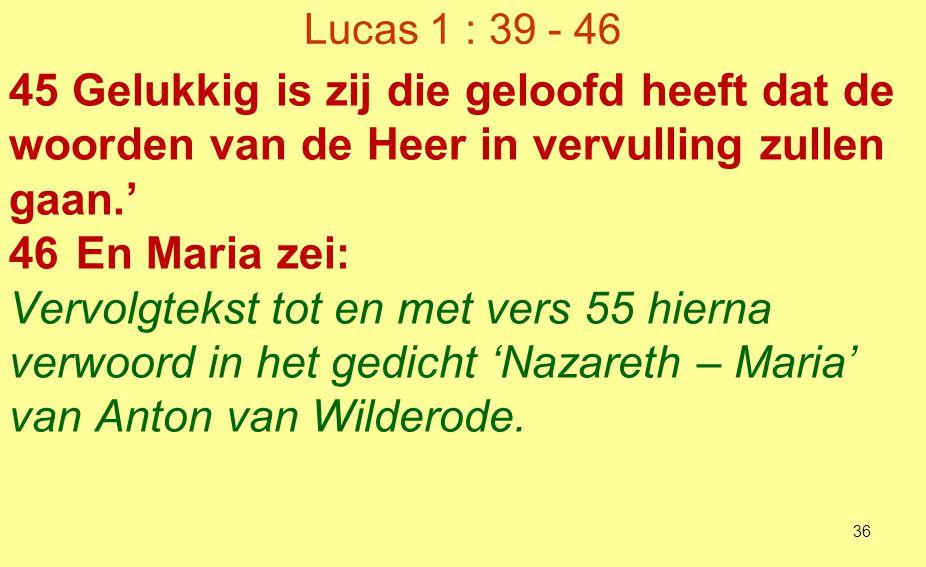 van Anton van Wilderode.