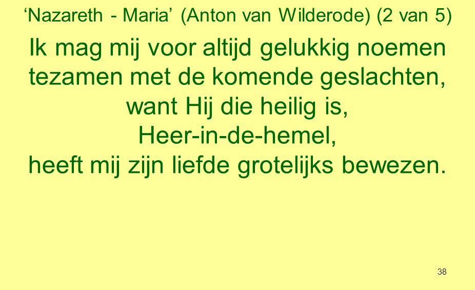 'Nazareth - Maria' (Anton van Wilderode) (2 van 5)