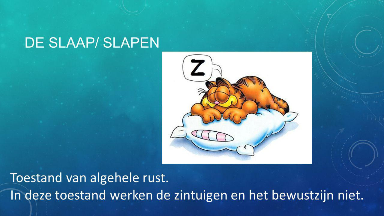 De slaap/ slapen Toestand van algehele rust.