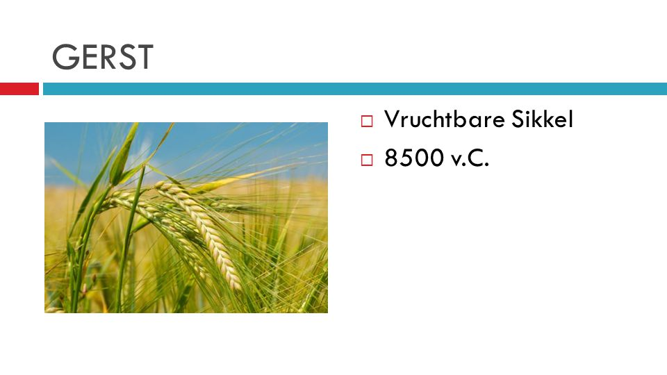 GERST Vruchtbare Sikkel 8500 v.C.