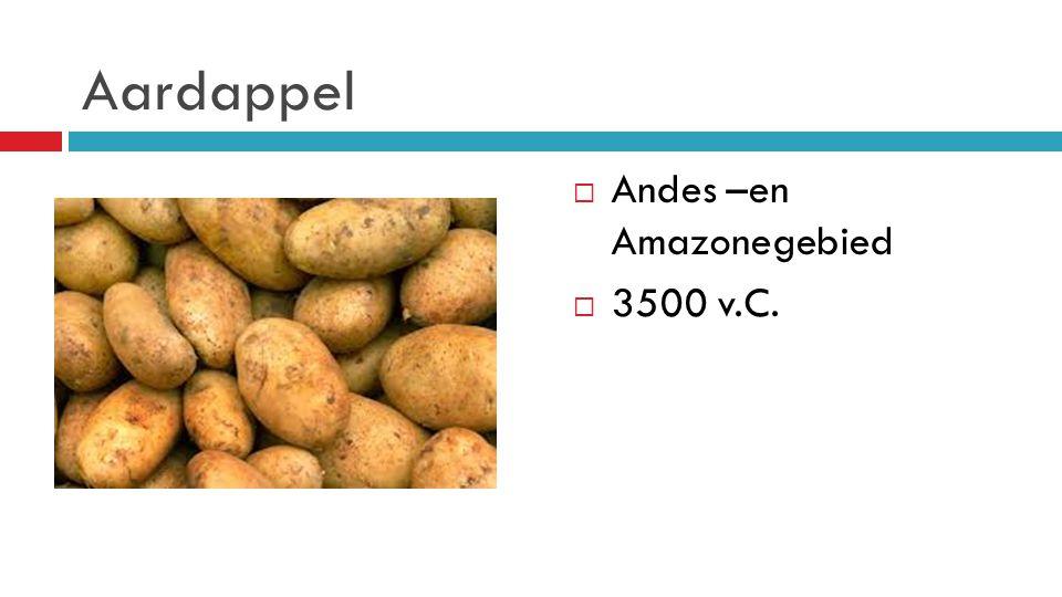 Aardappel Andes –en Amazonegebied 3500 v.C.