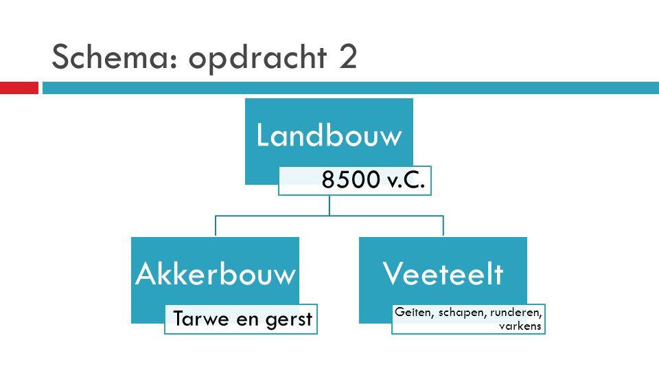 Schema: opdracht 2 Landbouw Akkerbouw Veeteelt 8500 v.C.