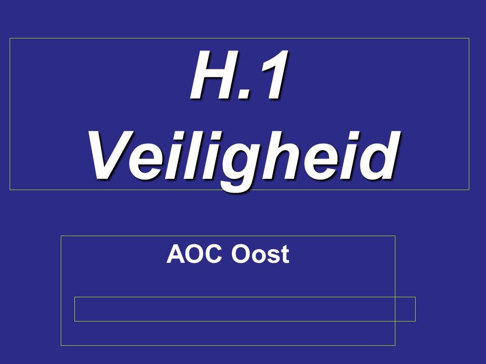H.1 Veiligheid AOC Oost