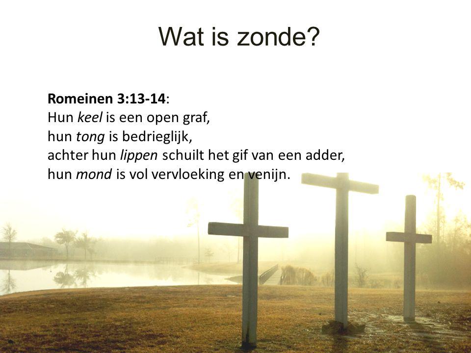 Wat is zonde Romeinen 3:13-14: Hun keel is een open graf,