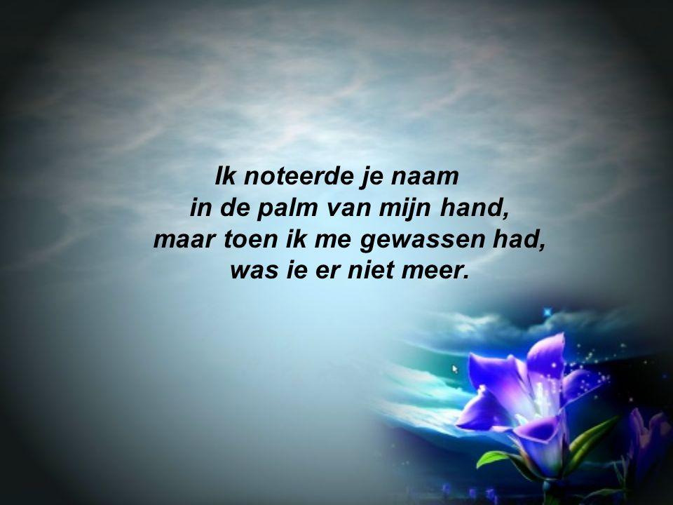 Ik noteerde je naam in de palm van mijn hand, maar toen ik me gewassen had, was ie er niet meer.