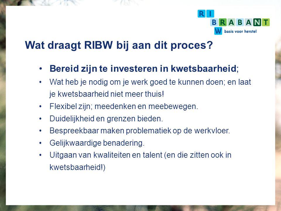 Wat draagt RIBW bij aan dit proces