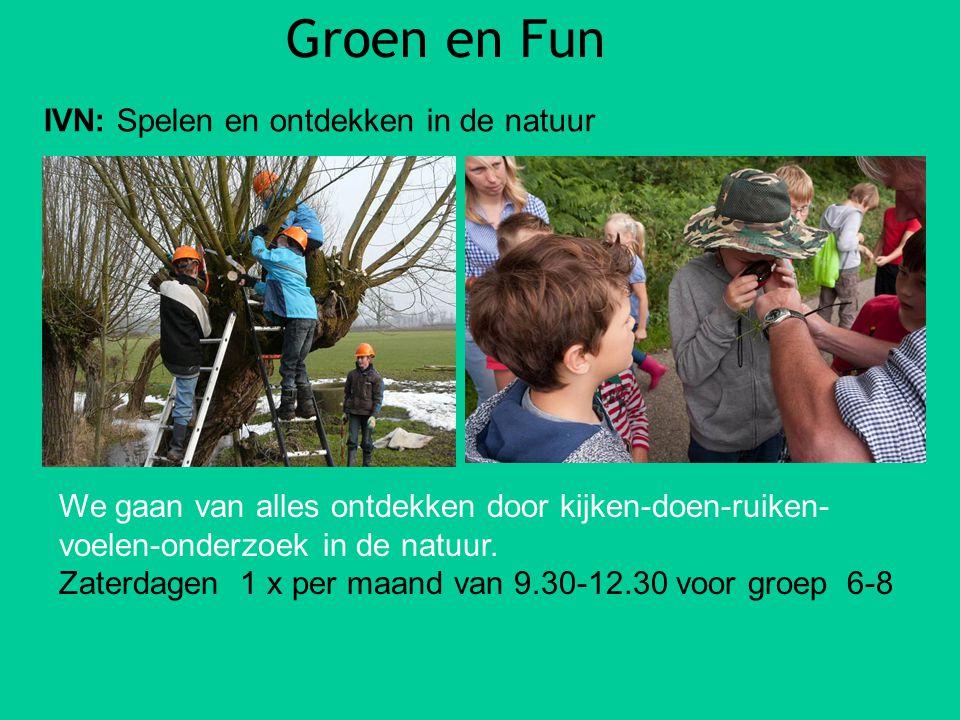 Groen en Fun IVN: Spelen en ontdekken in de natuur