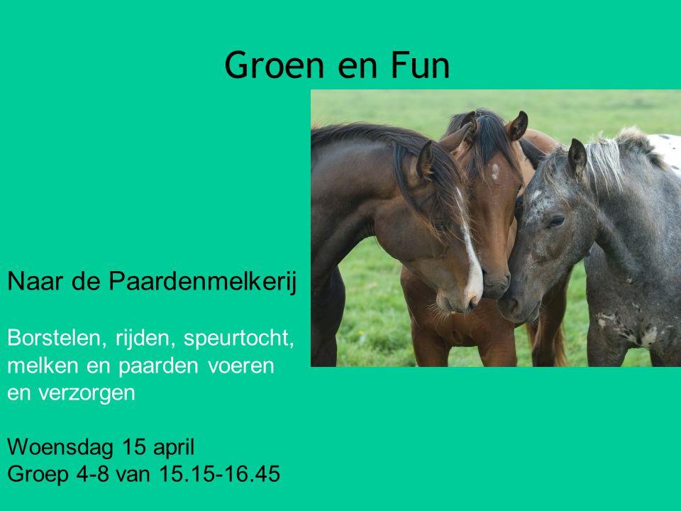 Groen en Fun Naar de Paardenmelkerij Borstelen, rijden, speurtocht,