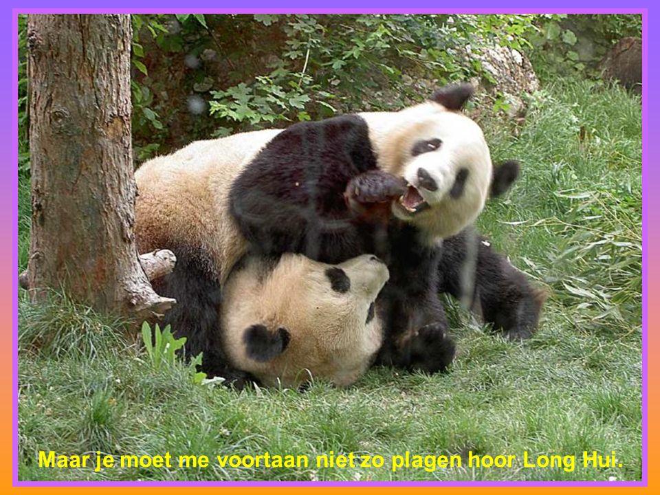 Maar je moet me voortaan niet zo plagen hoor Long Hui.