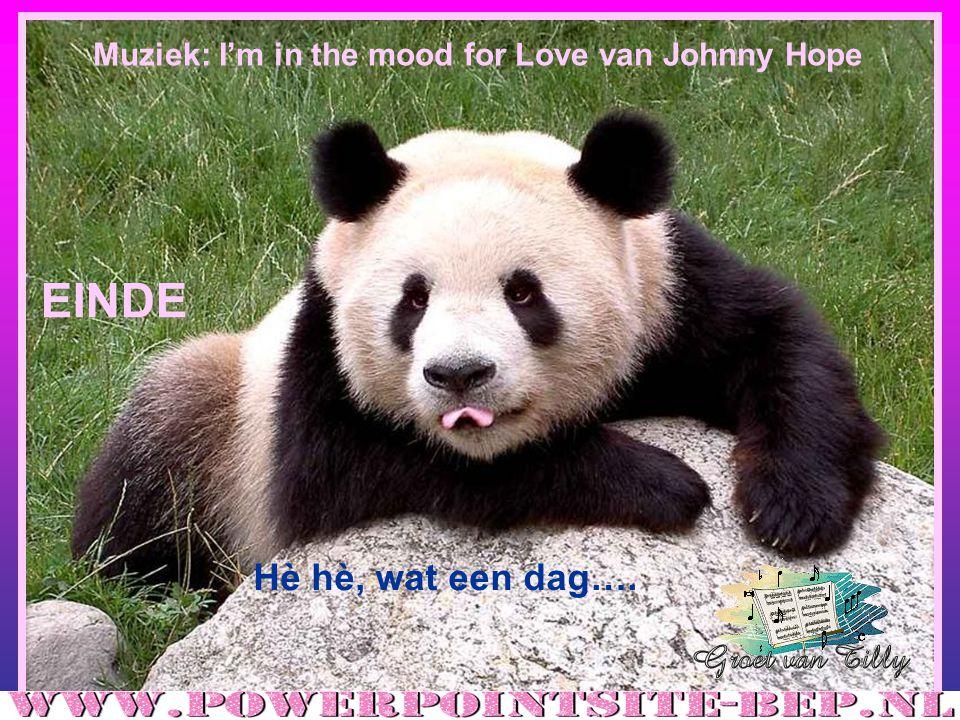 Muziek: I'm in the mood for Love van Johnny Hope