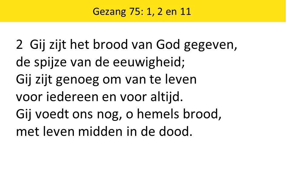 2 Gij zijt het brood van God gegeven, de spijze van de eeuwigheid;
