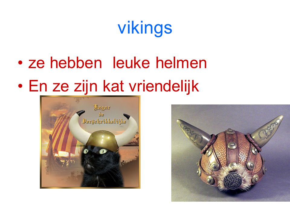 vikings ze hebben leuke helmen En ze zijn kat vriendelijk