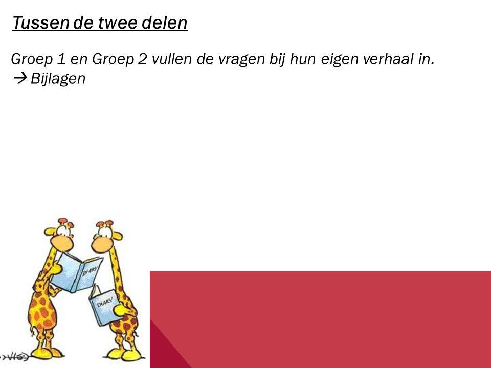 Tussen de twee delen Groep 1 en Groep 2 vullen de vragen bij hun eigen verhaal in.  Bijlagen