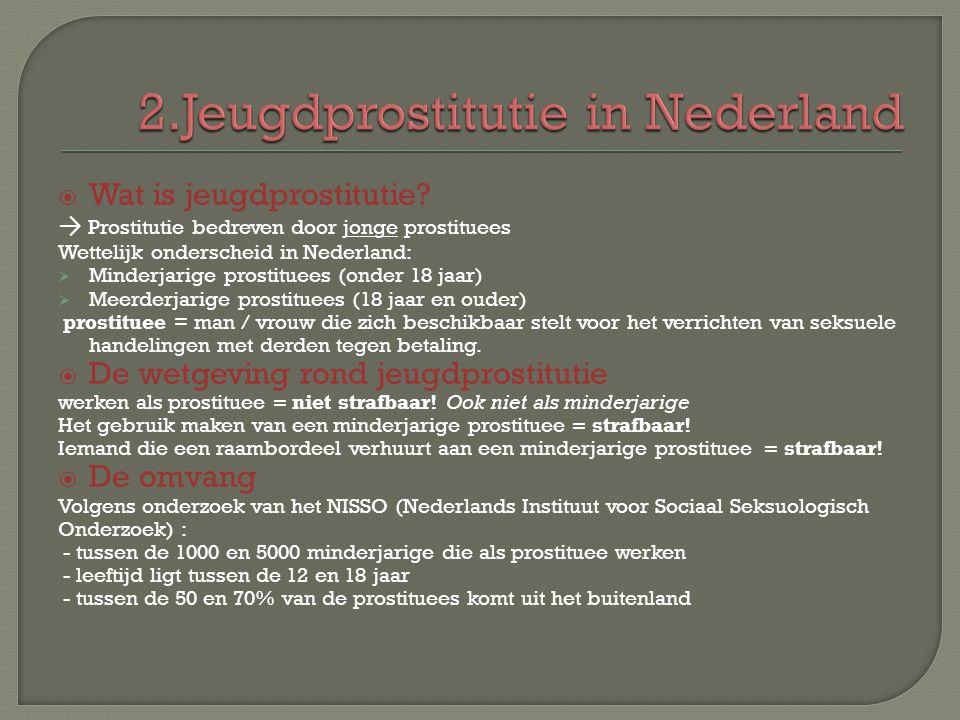 2.Jeugdprostitutie in Nederland