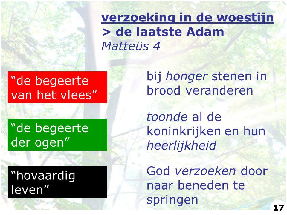 verzoeking in de woestijn > de laatste Adam Matteüs 4