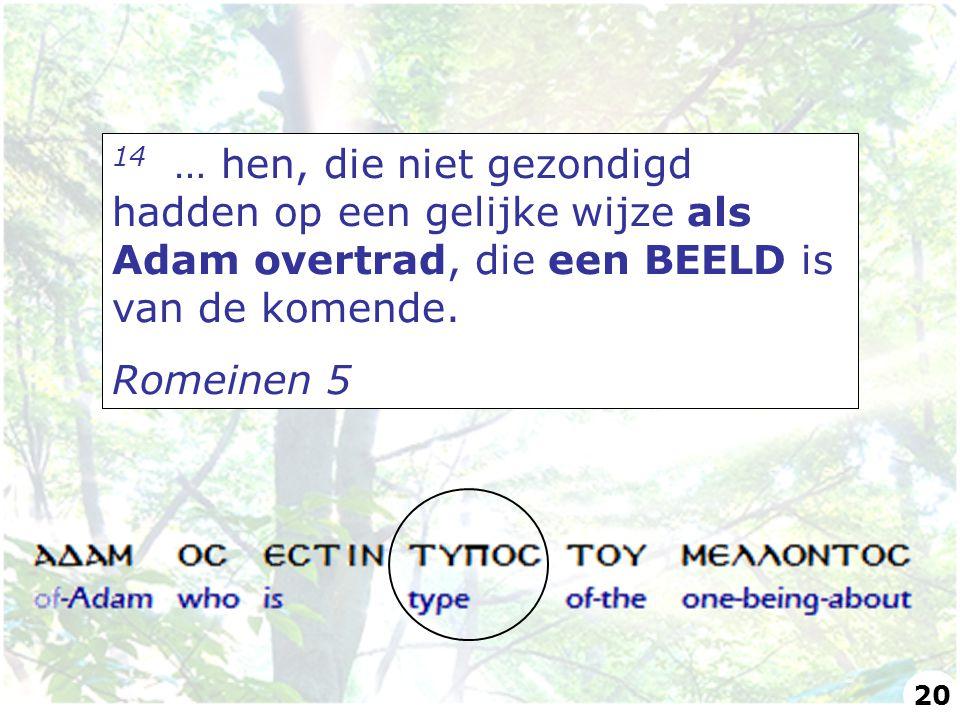 14 … hen, die niet gezondigd hadden op een gelijke wijze als Adam overtrad, die een BEELD is van de komende.