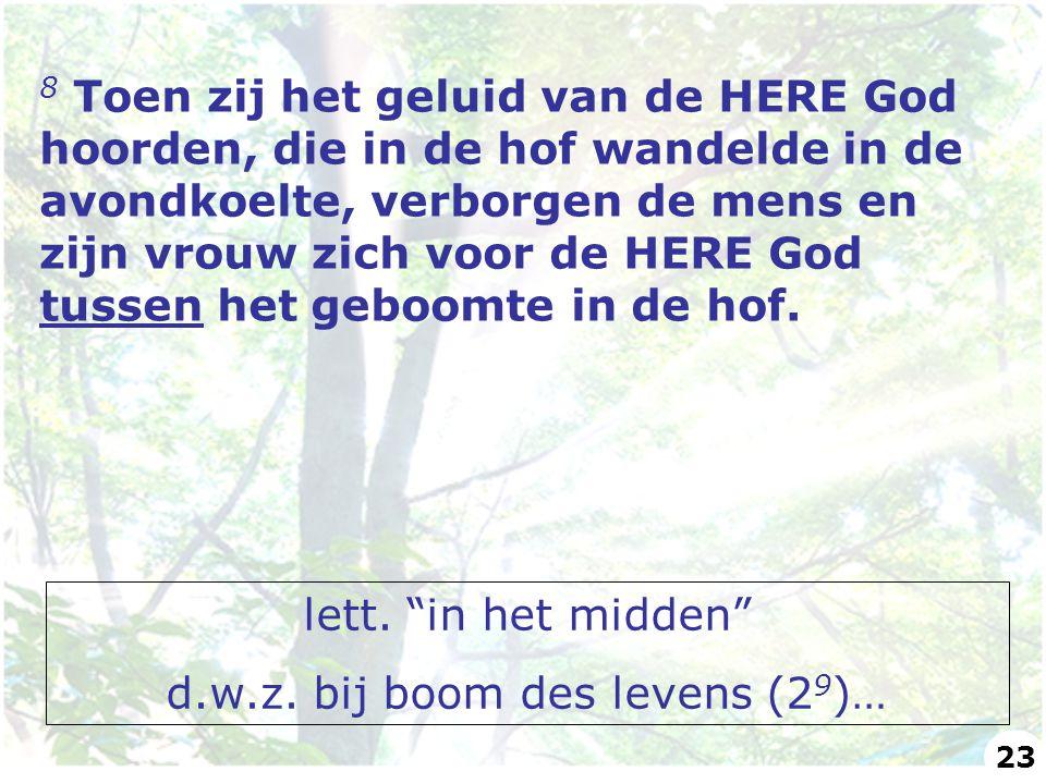 d.w.z. bij boom des levens (29)…