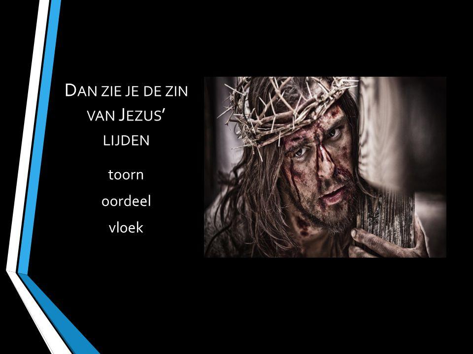 Dan zie je de zin van Jezus' lijden