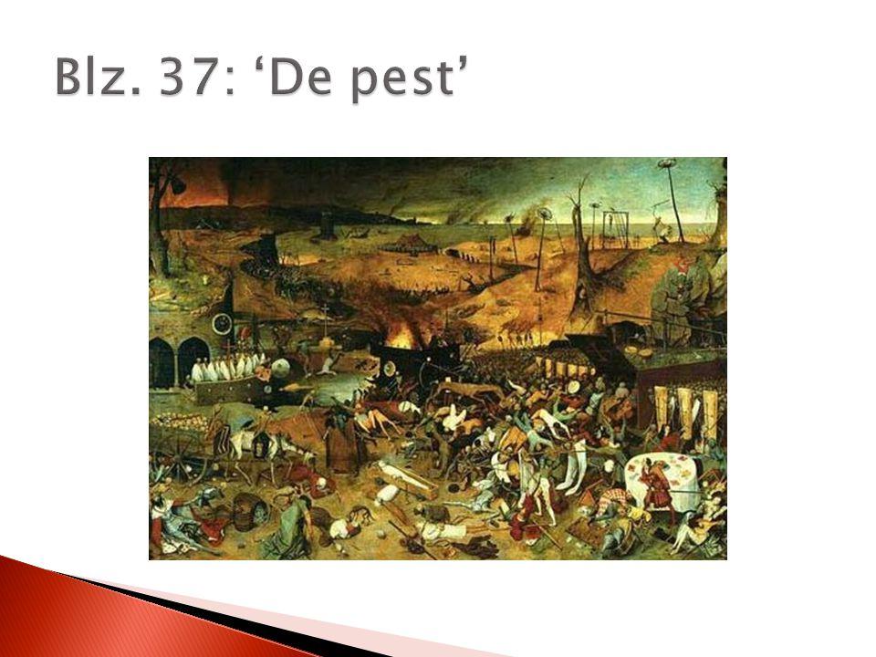 Blz. 37: 'De pest'
