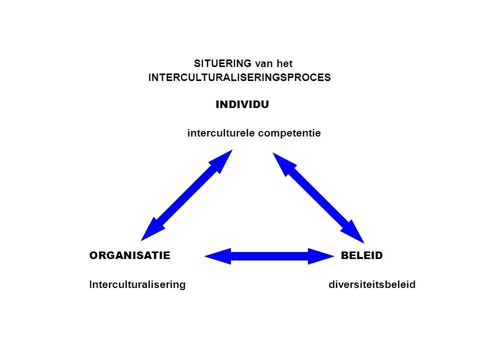 SITUERING van het INTERCULTURALISERINGSPROCES. INDIVIDU. interculturele competentie. ORGANISATIE.