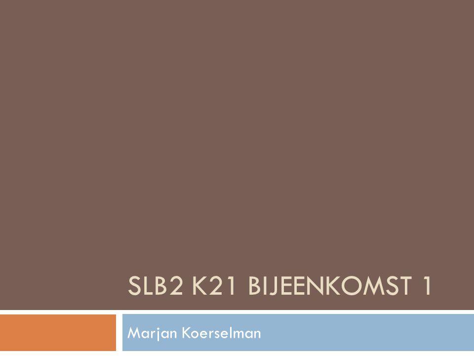 SLB2 K21 Bijeenkomst 1 Marjan Koerselman