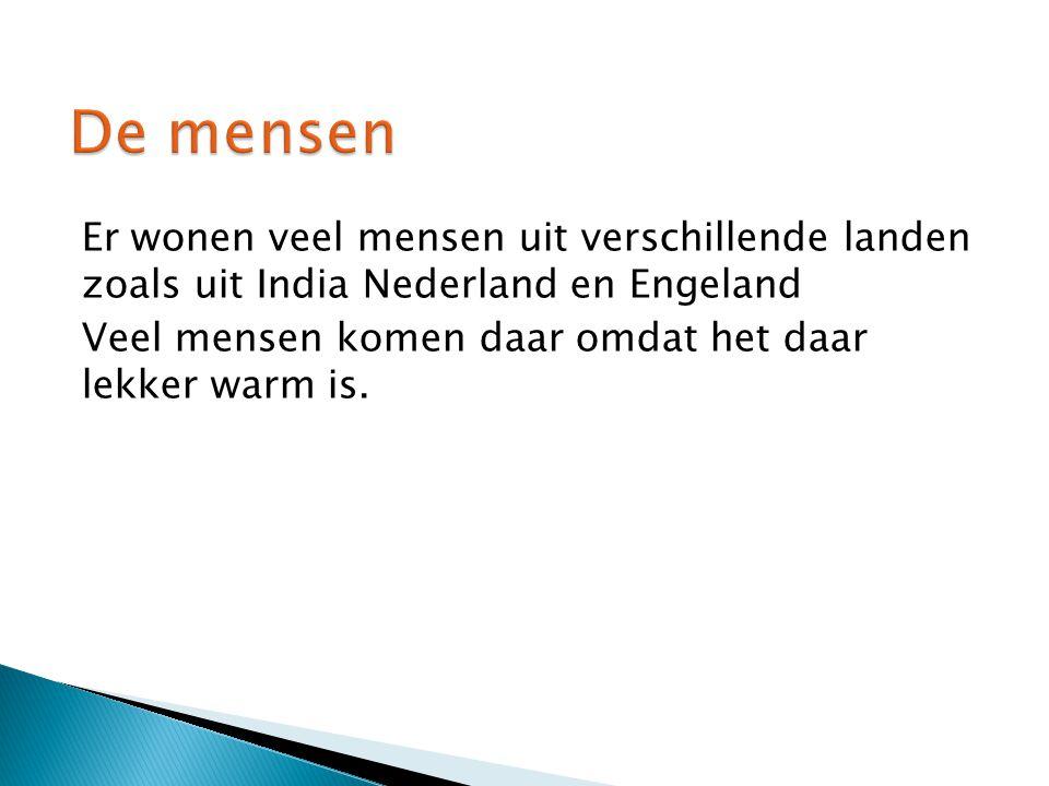 De mensen Er wonen veel mensen uit verschillende landen zoals uit India Nederland en Engeland Veel mensen komen daar omdat het daar lekker warm is.