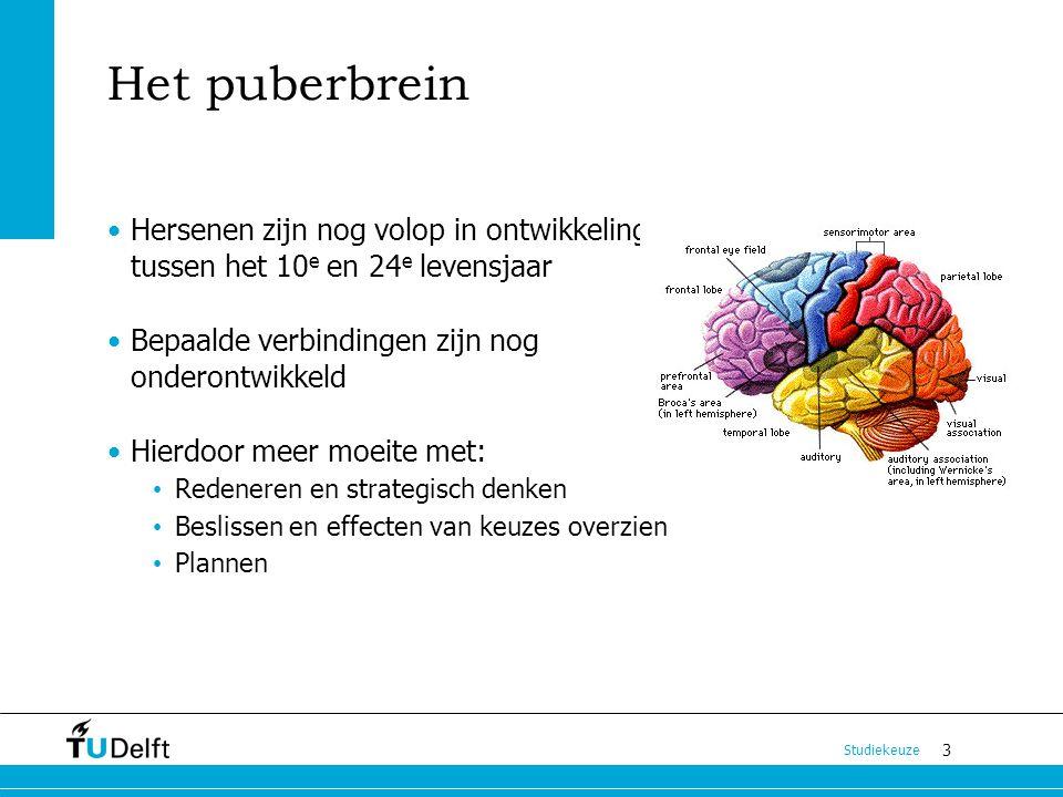 Het puberbrein Hersenen zijn nog volop in ontwikkeling tussen het 10e en 24e levensjaar. Bepaalde verbindingen zijn nog onderontwikkeld.