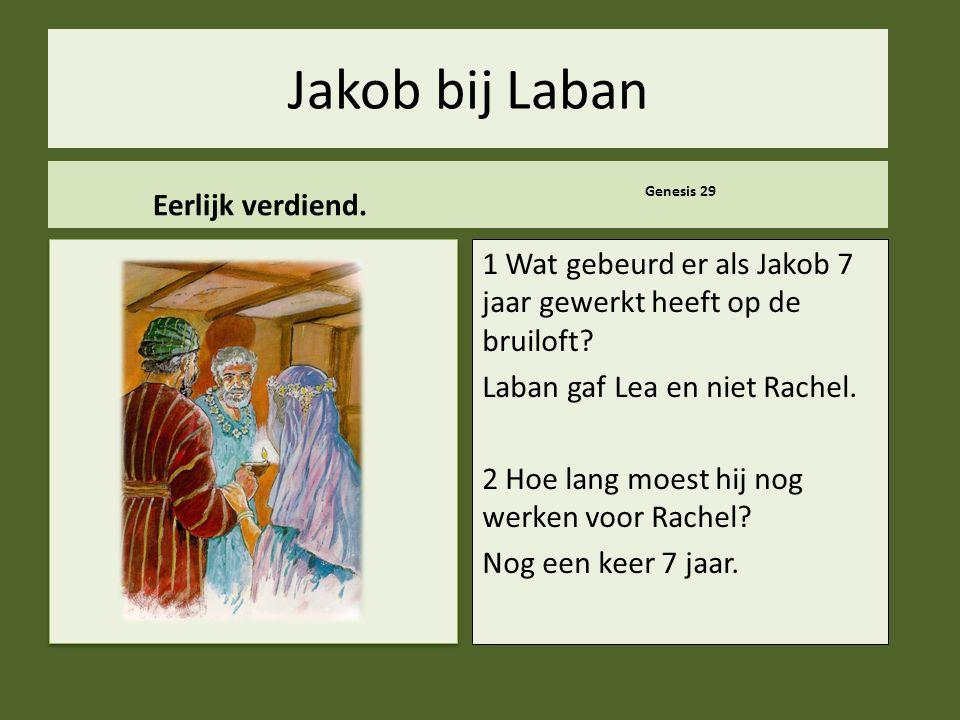 Jakob bij Laban Eerlijk verdiend.