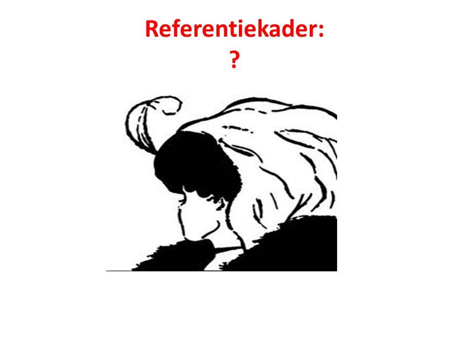 Referentiekader: