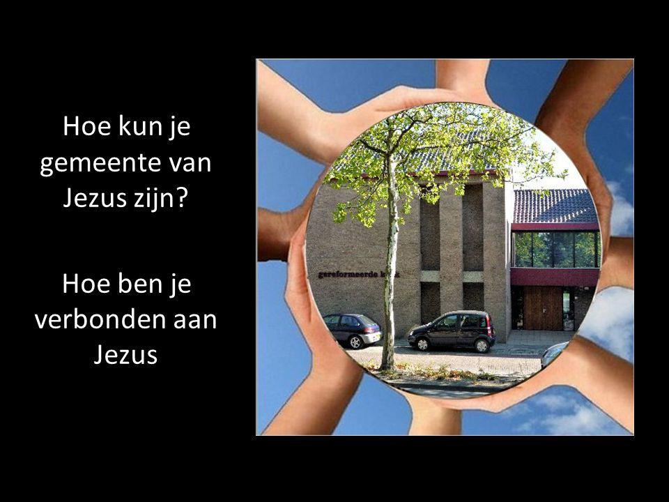 Hoe kun je gemeente van Jezus zijn