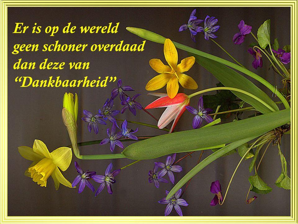 Er is op de wereld geen schoner overdaad dan deze van Dankbaarheid