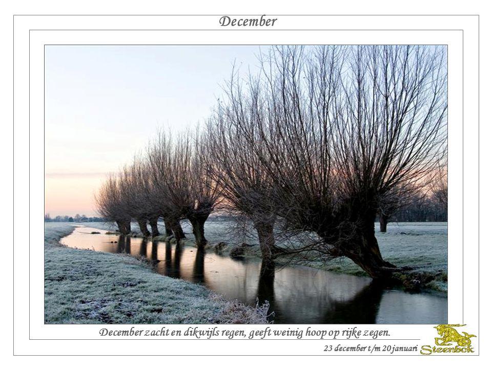December December zacht en dikwijls regen, geeft weinig hoop op rijke zegen.