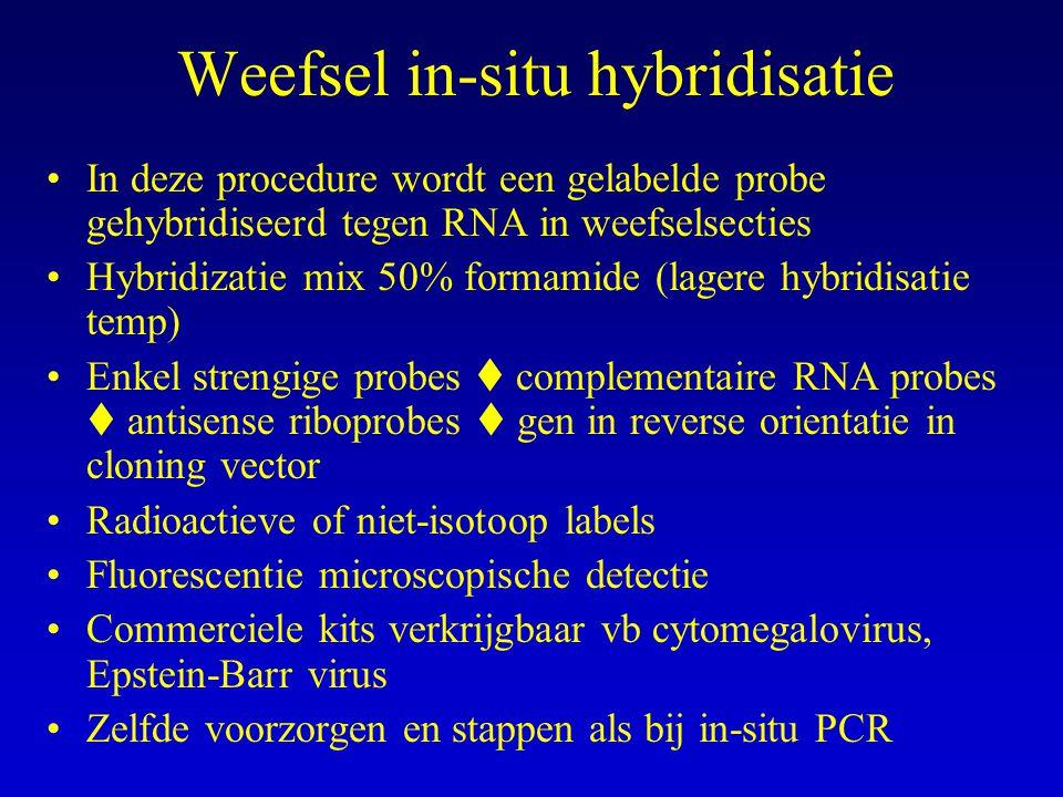 Weefsel in-situ hybridisatie