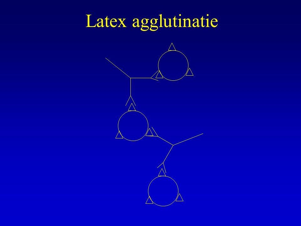 Latex agglutinatie