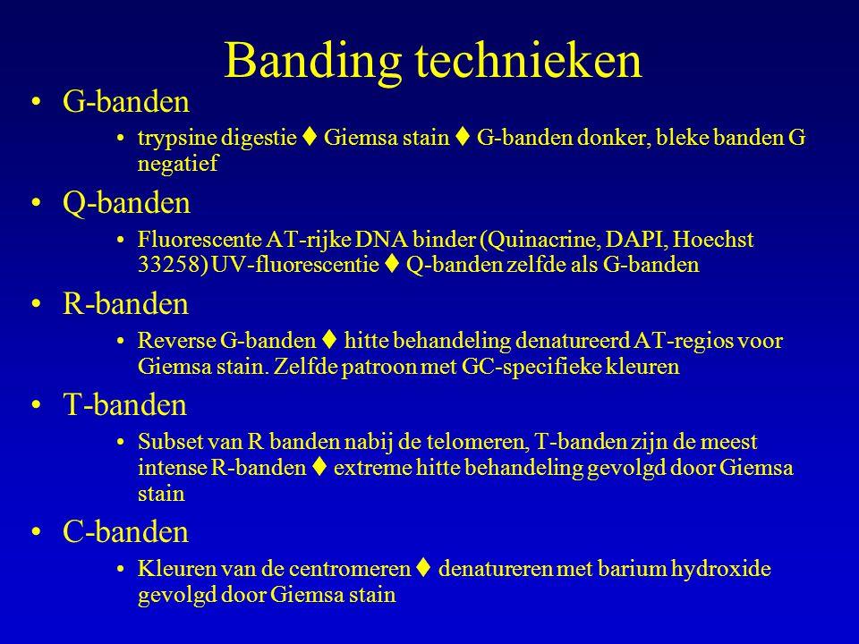 Banding technieken G-banden Q-banden R-banden T-banden C-banden